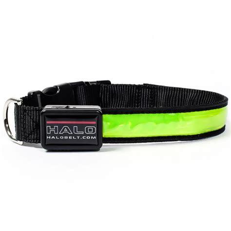 led collars halo mini led safety collar green small
