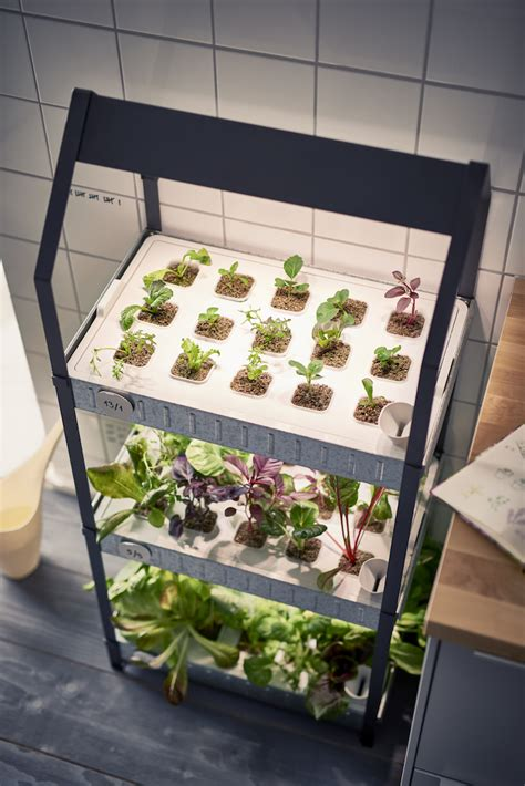 new from ikea a hydroponic countertop garden kit gardenista