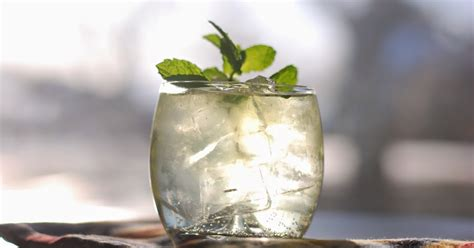 Happy Hour Lime Rickey by Call Me Fudge Happy Hour Sweetened Mint Lime Rickey