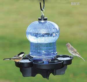 water cooler for birds with a roof backyardbirdwatcher nature bird water cooler