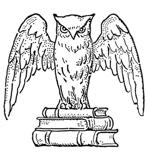 owl wings coloring page vintage clip art interesting owl with books the