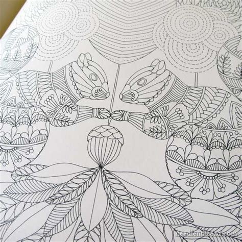 colouring books for adults animal kingdom embroidery design inspiration from coloring books