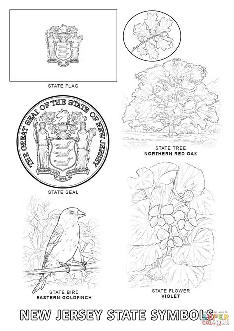 coloring page of new jersey state flower new jersey state symbols coloring page free printable