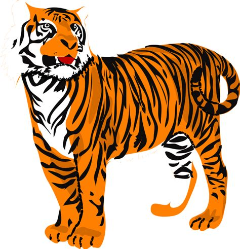 tiger clipart free large images