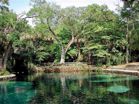 Juniper Springs Cabin by Family Travel A Day At The Juniper Springs
