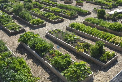 Starting A Community Garden by Starting A Community Garden Garden Europe