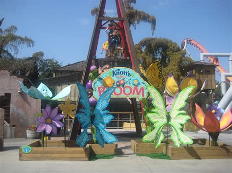 swings at knotts berry farm knott s berry bloom in full swing this spring any tots