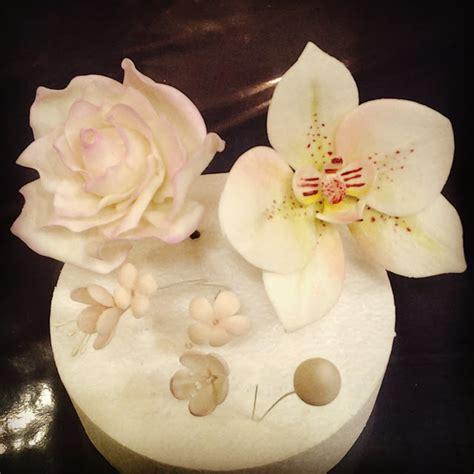 fiori con pasta di zucchero tecnica creattivamente fiori e modelling la pratica affina la