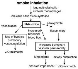 smoke inhalation injury inhalation injury smoke