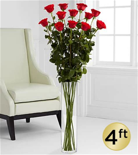 4 Foot Vase by The Ultimate Bouquet 12 Stems 4 Foot Roses Vase