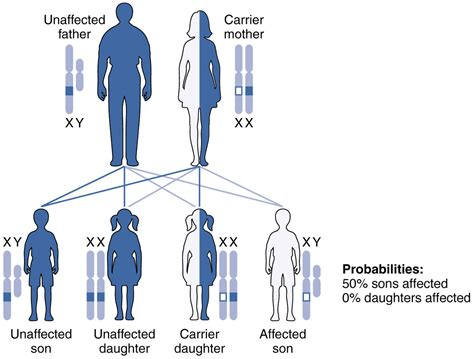 definition pattern disease file 2928 x linked recessive inheritance new jpg
