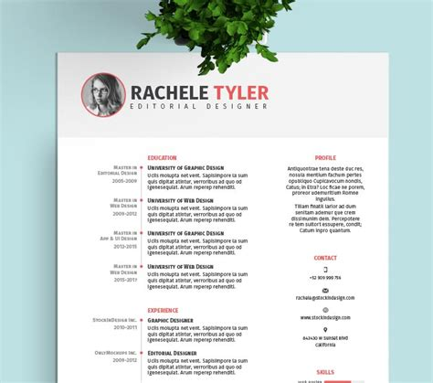 FREE InDesign Resume Template   StockInDesign