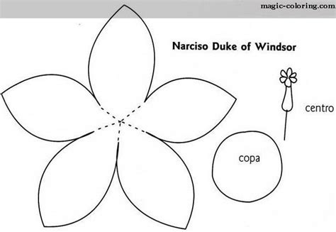 template of a daffodil magic coloring narcissus daffodil flowers templates