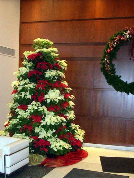 fresh flowers christmas tree with fresh poinsettias in