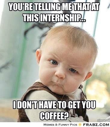 Intern Meme - 4 truths about internships agile search