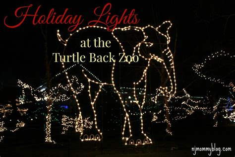 holiday lights at the turtle back zoo in west orange nj