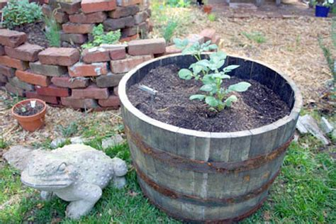 Whiskey Barrel Planter Drainage by Diy Planters Upcycled Planters For Your Garden