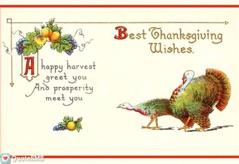 Thanksgiving Free Cards