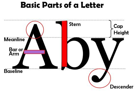 typography basics typography lettering basics lesson plan and worksheet