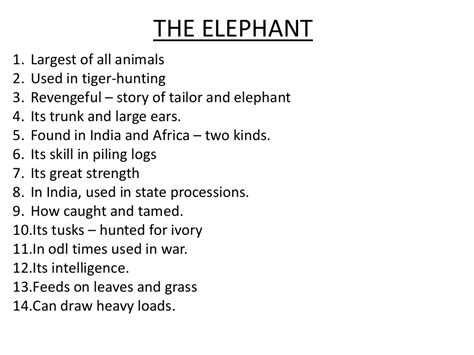 An Elephant Essay by To Sum Up How To Write Essay Writing