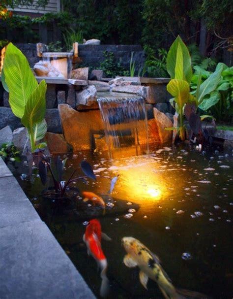 creating  koi pond   garden typical extra