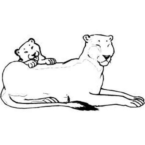 coloring pages lioness lioness and club coloring page