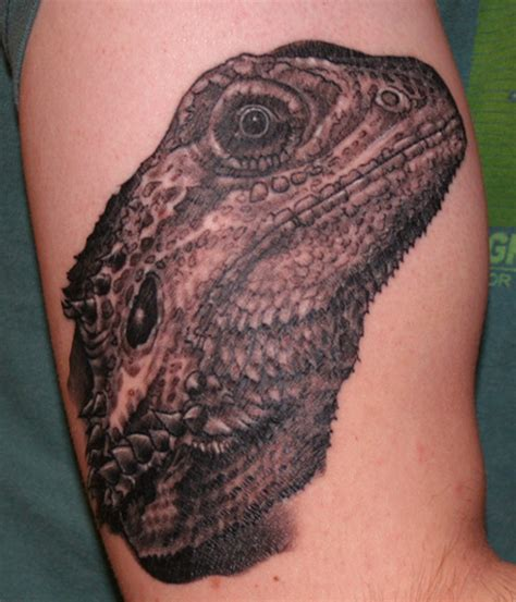 bearded dragon tattoo bearded picture