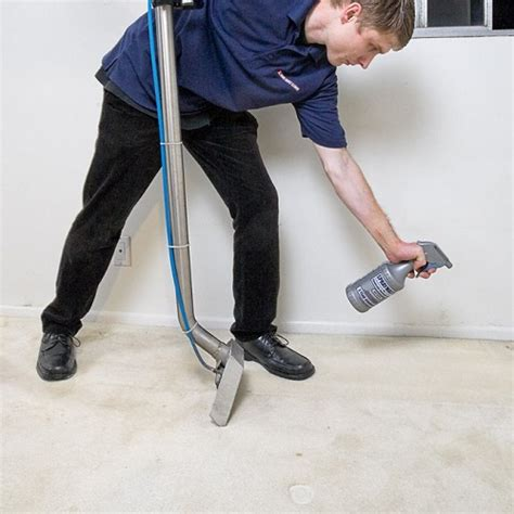 Upholstery Cleaning Services by Carpet Cleaning Services Carpet Cleaners Company Uk