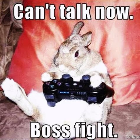Fight Meme - rabbit meme playing ps3 videogames cant talk now boss