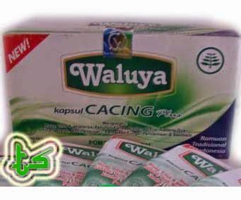 Obat Cacing Drontal Plus kapsul cacing waluya plus obat typus