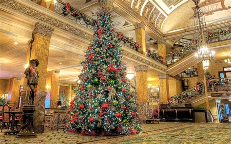 28 best christmas trees milwaukee blog visit milwaukee