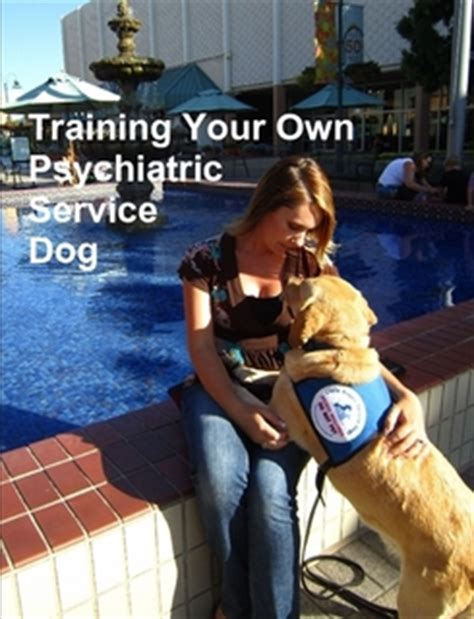 how to your own psychiatric service your own psychiatric service by gonzalez cdt paperback lulu
