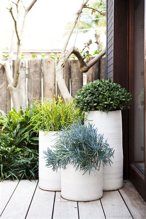 Patio Greenery Ideas Planters Front Doors And Chang E 3 On