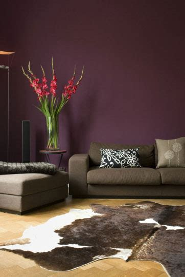 best color to paint a living room with purple wall brown hairs