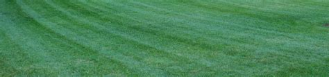 Ground Effects Lawn Care Service Ground Effects Landscaping