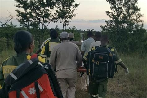 Woman dead after severe elephant attack in Kruger National