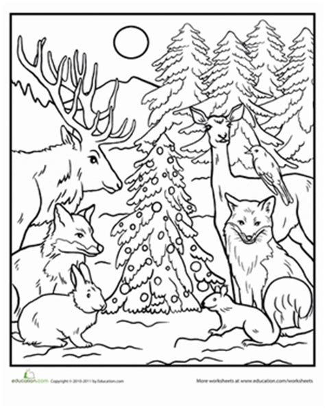 coloring pages of animals in the forest color the forest holiday worksheet education com