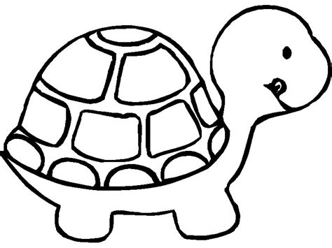 Turtle Coloring Pages Printable Free Printable Animal Quot Turtle Quot Coloring Pages