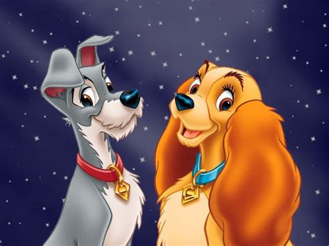 lady tramp images lady tramp wallpaper hd wallpaper background photos 6615969