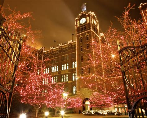 a b s brewery holiday lights adding ice rink blues alumni