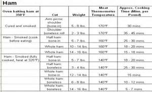 cooking basics meat cooking times and temperatures