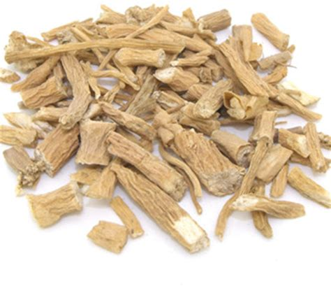 supplement yin yin chai hu tcm herbs tcm wiki