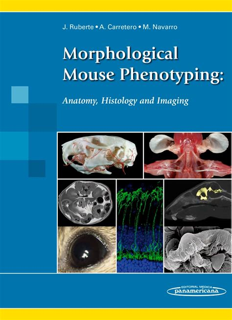 libro un raton a mouse morphological mouse phenotyping anatomy histology and imaging