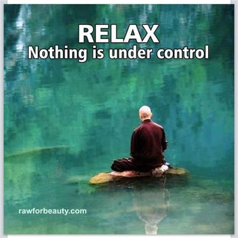 Relax Meme - relax nothing is under control funny pinterest