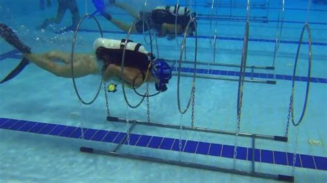 dive sport cmas 2013 sport diving version
