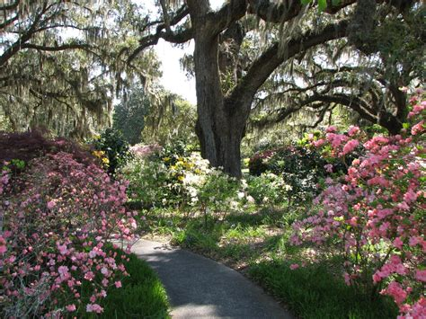 Brook Green Garden by 111 Lala Brookgreen Gardens 5k 1 Mile Race