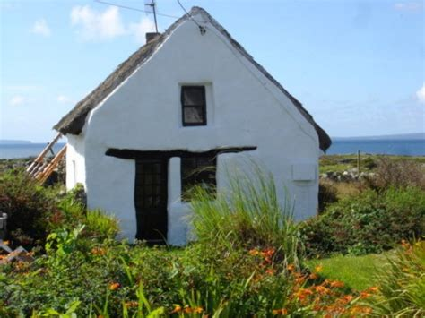 side of thatched cottage for sale in galway cottages