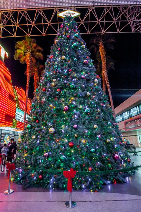 official tree lighting ceremony kicks off holiday season