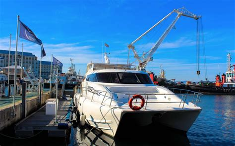 catamaran cape town tours full day charters cape town v a waterfront private