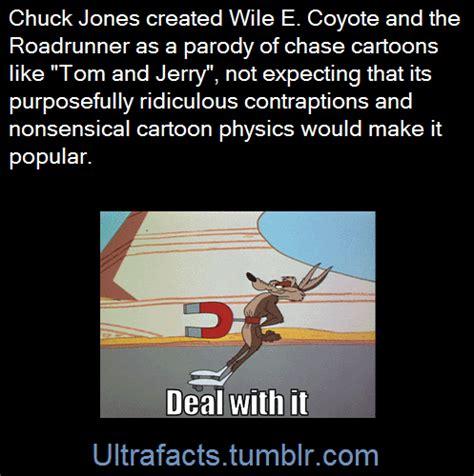 wile e coyote facts wile e coyote tumblr
